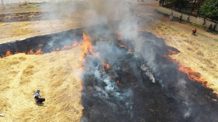 Toprak anadır yakılmaz