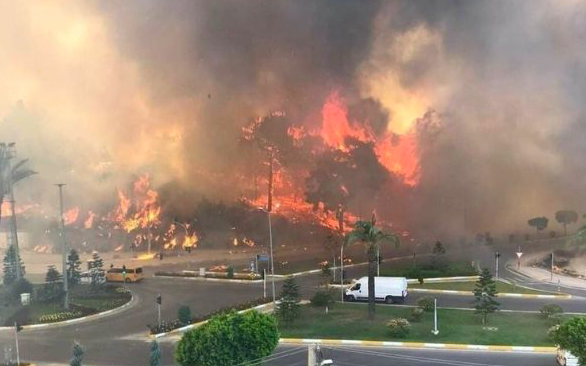 Manavgat/Antalya Orman Yangını